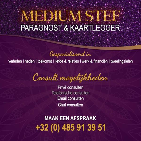 medium-stef