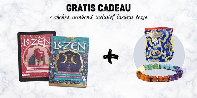 b-zen-gratis-cadeau-2